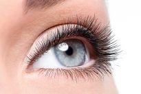 Beauty female eye with curl long false eyelashes - macro shot ov